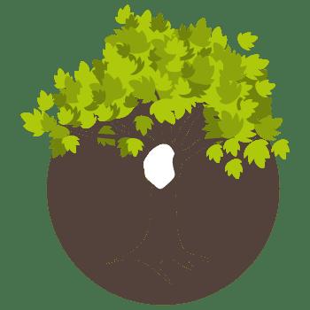 bestrijdingsplan eikenprocessierups popfase Nature Care