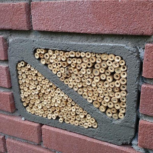 Solitaire bijen insectenblok inmetselen