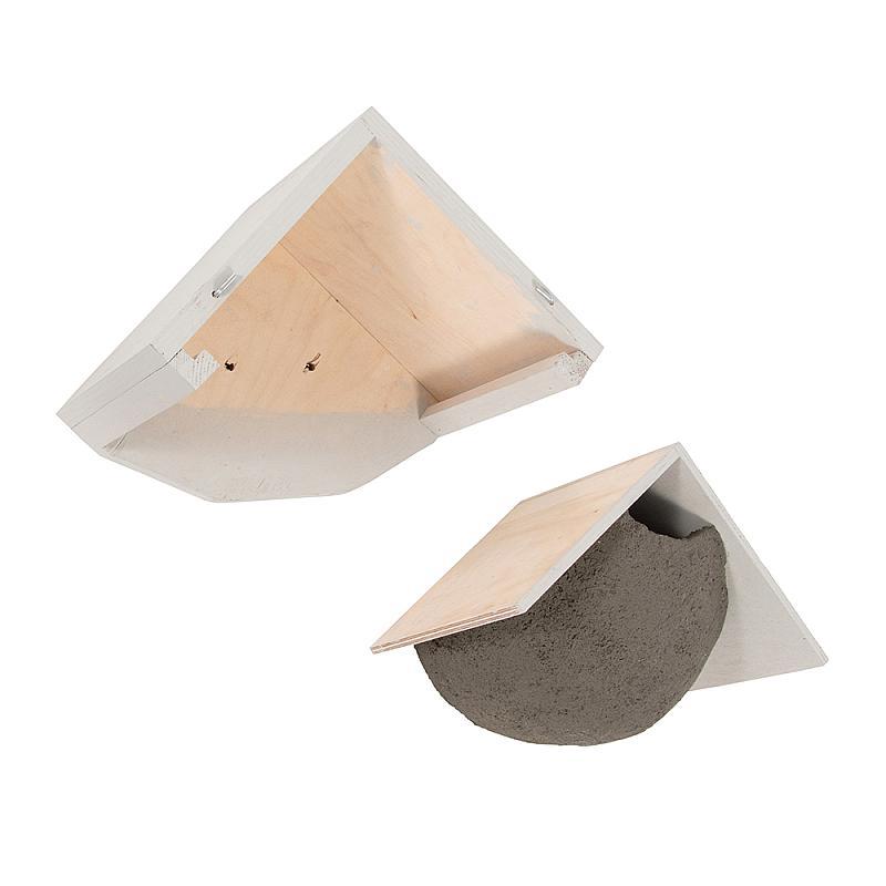 Zwaluwen huiszwaluw witte dak ladesysteem uit elkaar
