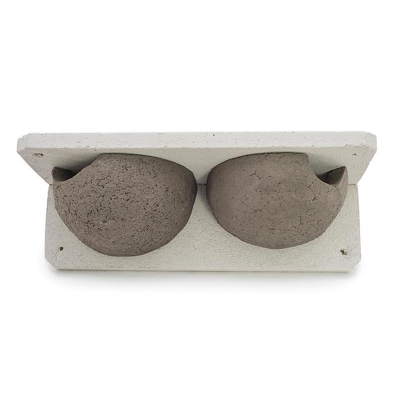 Zwaluwen huiszwaluwen nestkast vooraanzicht