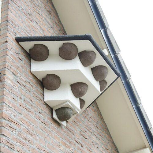 Zwaluwen huiszwaluwen wandtil aan muur